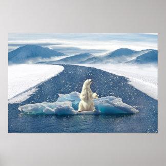 Polar Bear Poster