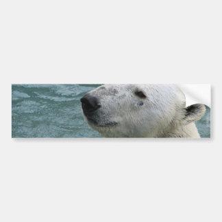 Polar Bear Profile Bumper Stickers
