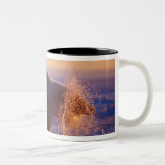 Polar bear pulling its head out of a hole in the Two-Tone coffee mug