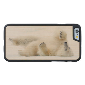 Polar bear rolling in snow, Norway Carved Maple iPhone 6 Case