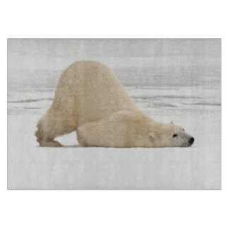 Polar bear scratching itself on frozen tundra cutting board