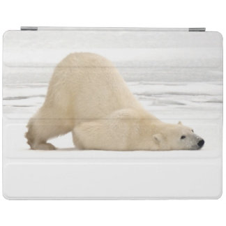 Polar bear scratching itself on frozen tundra iPad cover