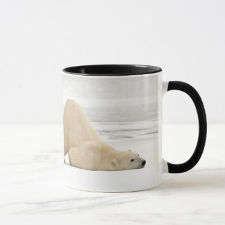 Polar bear scratching itself on frozen tundra mug
