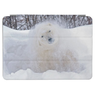 Polar bear shaking snow off on frozen tundra iPad air cover