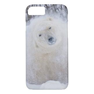 Polar bear shaking snow off on frozen tundra iPhone 8/7 case