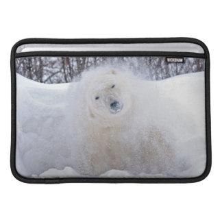 Polar bear shaking snow off on frozen tundra MacBook sleeve