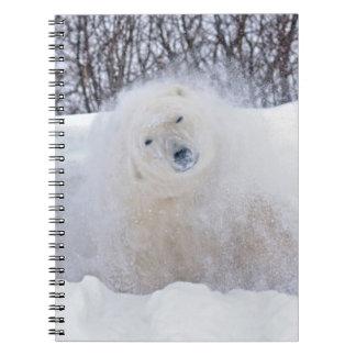 Polar bear shaking snow off on frozen tundra notebooks