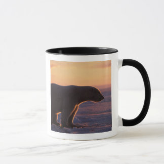 Polar bear silhouette, sunrise, pack ice of mug