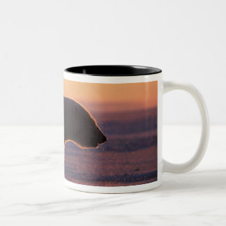 Polar bear silhouette, sunrise, pack ice of Two-Tone coffee mug