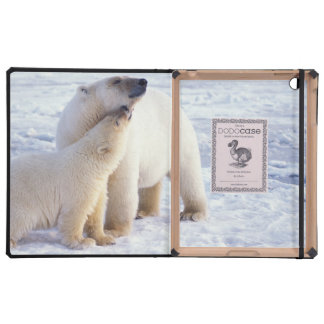 Polar bear sow with cub, pack ice of the cases for iPad