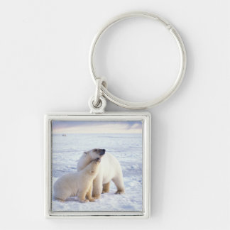 Polar bear sow with cub, pack ice of the Silver-Colored square key ring