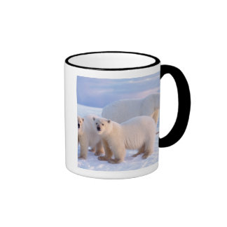 Polar bear sow with cubs on pack ice, coastal coffee mug