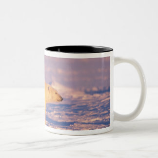 Polar bear sow with spring cubs on the frozen Two-Tone coffee mug