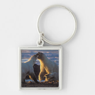 Polar bear sows with cub at side, 1002 coastal Silver-Colored square key ring