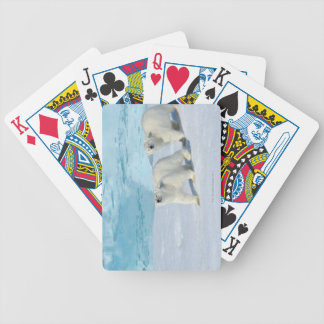 Polar bear, two cups on pack ice, Ursus Bicycle Playing Cards