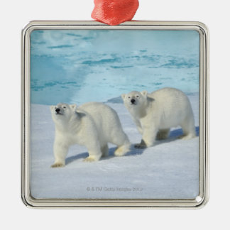 Polar bear, two cups on pack ice, Ursus Christmas Ornament