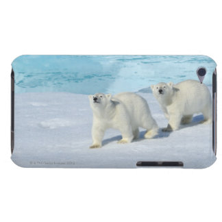 Polar bear, two cups on pack ice, Ursus iPod Touch Covers