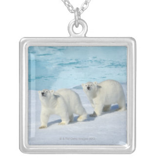 Polar bear, two cups on pack ice, Ursus Silver Plated Necklace