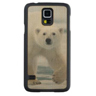 Polar Bear, Ursus Maritimus, Adult Carved Maple Galaxy S5 Case