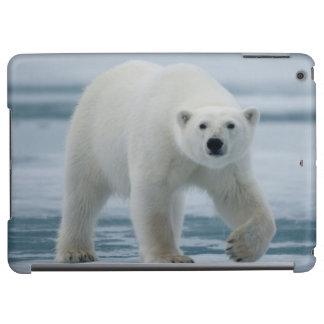 Polar Bear, Ursus Maritimus, Adult iPad Air Case