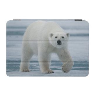 Polar Bear, Ursus Maritimus, Adult iPad Mini Cover