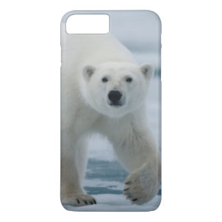 Polar Bear, Ursus Maritimus, Adult iPhone 8 Plus/7 Plus Case