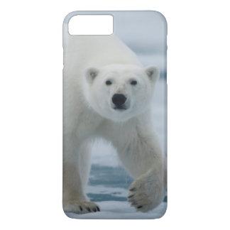 Polar Bear, Ursus Maritimus, Adult iPhone 8 Plus/7 Plus Case