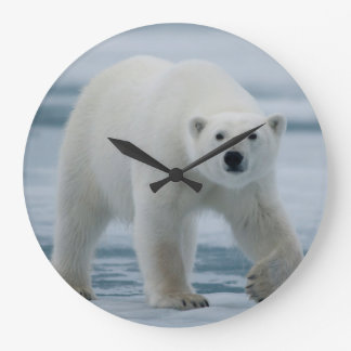 Polar Bear, Ursus Maritimus, Adult Large Clock