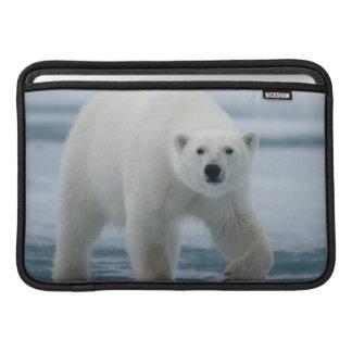 Polar Bear, Ursus Maritimus, Adult Sleeve For MacBook Air