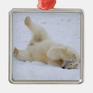 polar bear, Ursus maritimus, cub rolling 2 Christmas Ornament
