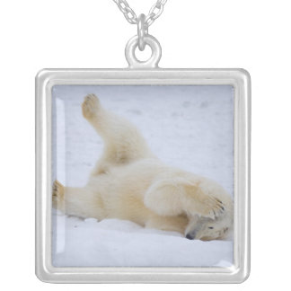 polar bear, Ursus maritimus, cub rolling 2 Silver Plated Necklace