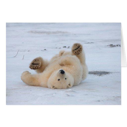 polar bear, Ursus maritimus, cub rolling 3 Greeting Card