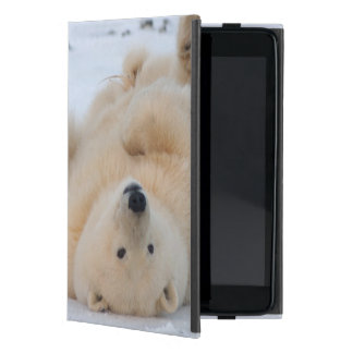 polar bear, Ursus maritimus, cub rolling 3 Case For iPad Mini