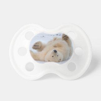 polar bear, Ursus maritimus, cub rolling 3 Pacifier