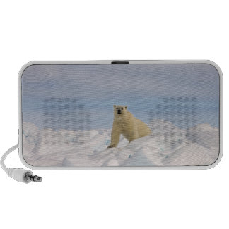 polar bear, Ursus maritimus, in rough ice on Notebook Speaker