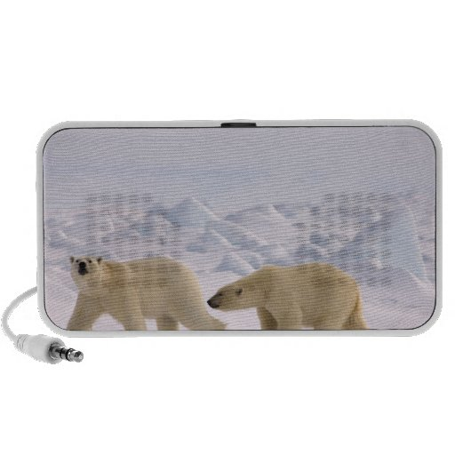 polar bear, Ursus maritimus, pair in rough ice Mp3 Speakers
