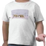 polar bear, Ursus maritimus, pair in rough ice T Shirts