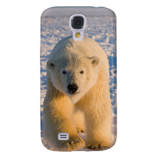 polar bear, Ursus maritimus, polar bear on ice Galaxy S4 Case