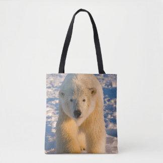 polar bear, Ursus maritimus, polar bear on ice Tote Bag