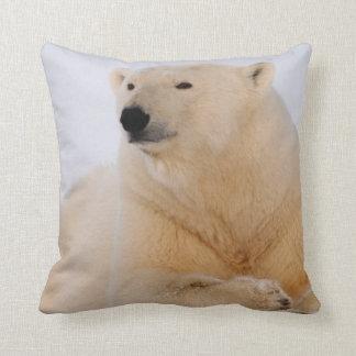 polar bear, Ursus maritimus, resting on the Throw Pillow