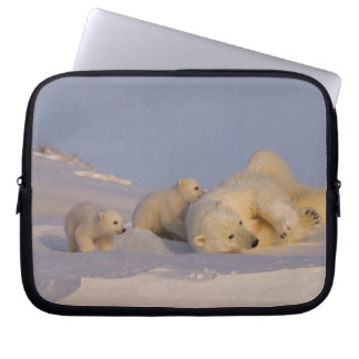 polar bear, Ursus maritimus, sow playing with Laptop Sleeve