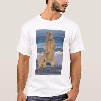 polar bear, Ursus maritimus, sow with cub 2 T-Shirt