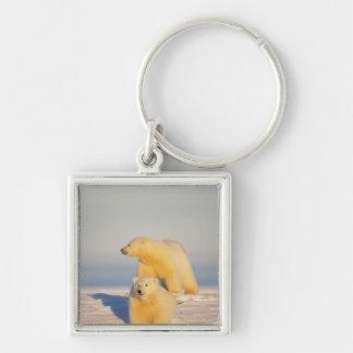 polar bear, Ursus maritimus, sow with cub 3 Silver-Colored Square Key Ring