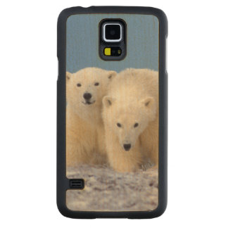 polar bear, Ursus maritimus, sow with cubs Carved Maple Galaxy S5 Case