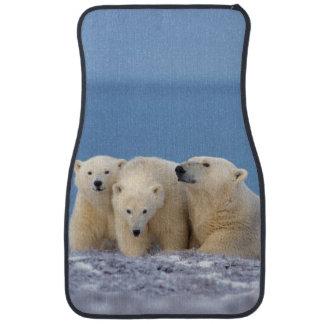 polar bear, Ursus maritimus, sow with cubs Floor Mat