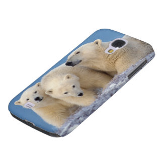polar bear, Ursus maritimus, sow with cubs Galaxy S4 Case