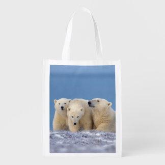 polar bear, Ursus maritimus, sow with cubs Reusable Grocery Bag