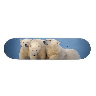 polar bear, Ursus maritimus, sow with cubs Custom Skate Board