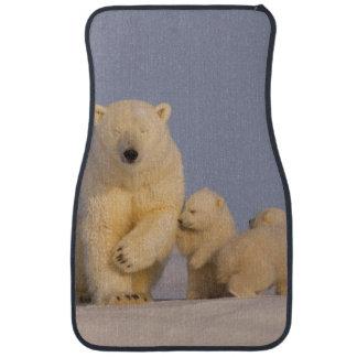 polar bear, Ursus maritimus, sow with newborn 3 Car Mat