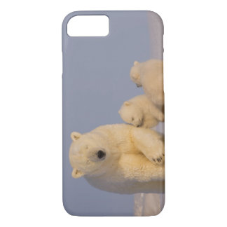 polar bear, Ursus maritimus, sow with newborn 3 iPhone 8/7 Case